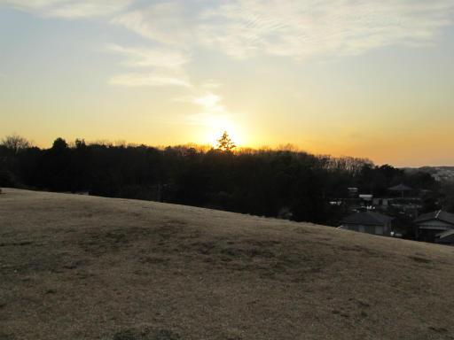 20120218・荒幡散歩3-17