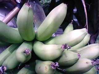 banana013 2