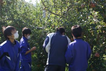 竜峡中学農体