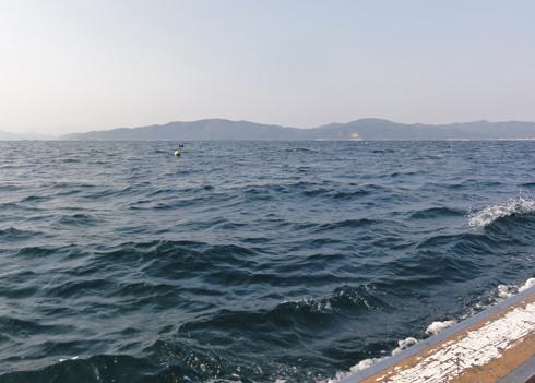 夏泊鯛釣-3