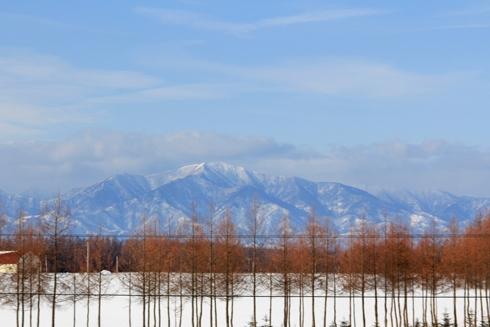 冬の日高-3