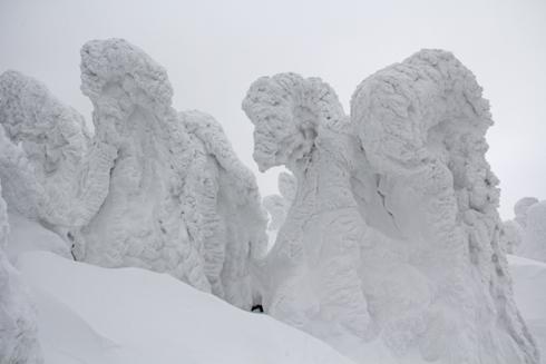 八甲田樹氷-5