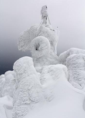 八甲田樹氷-2