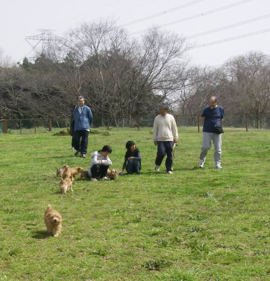 2010 03 22 047-oyako