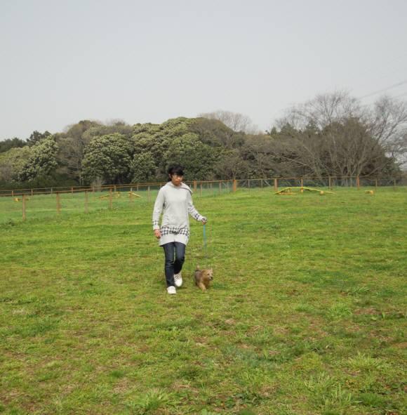 2010 03 22 114-k