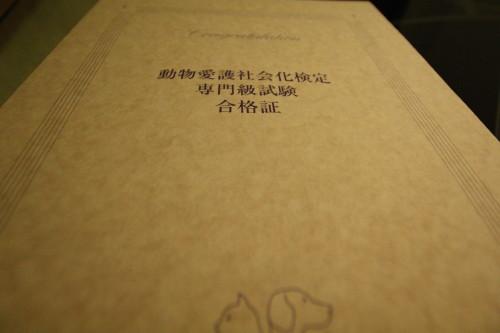 2010020410.jpg