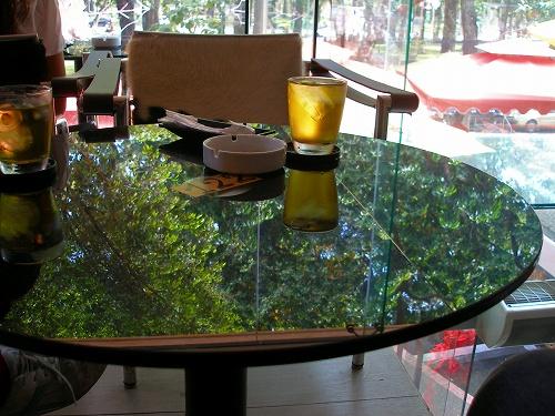 07120918テーブルに映える緑