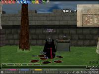 mabinogi_2008_11_28_016.jpg