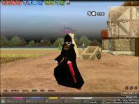 mabinogi_2008_12_04_041.jpg