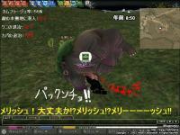 mabinogi_2008_12_22_039.jpg