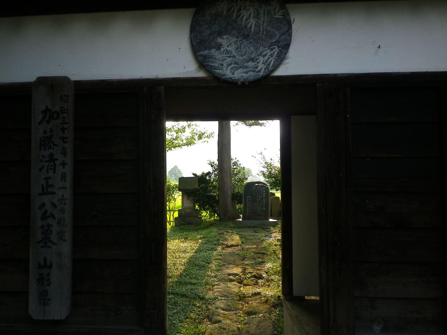 IMGP4655.jpg