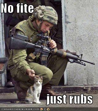 funny-pictures-soldier-and-cat.jpeg