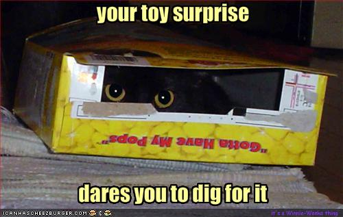 funny-pictures-there-is-a-surprise-in-your-cereal-box.jpeg