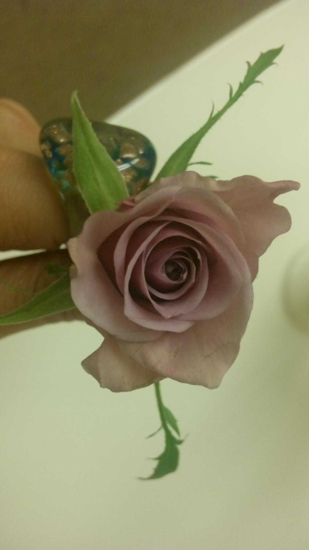 flower lesson 20100226 1