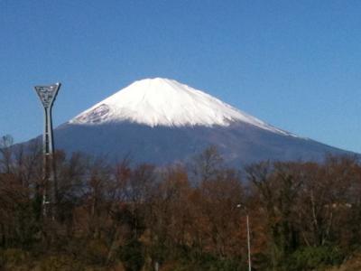 20111204_東京ディジュフェスタ2011_13