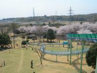 裾野の公園