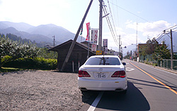 rinogo.jpg