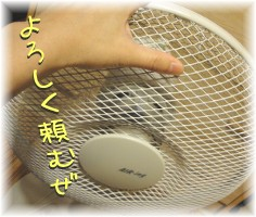 DSC00352.jpg