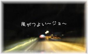 DSC02793.jpg