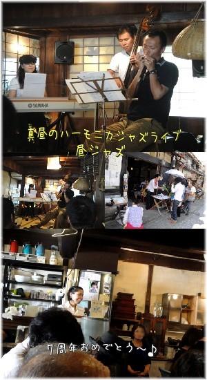 tao-live.jpg