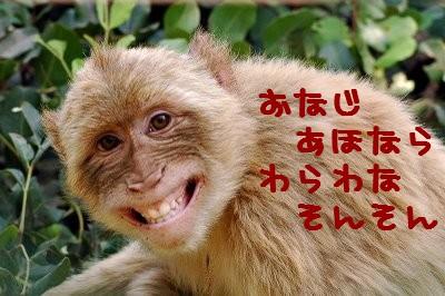 monkeysmilesss
