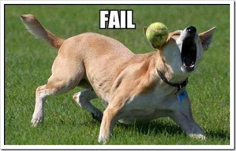fail-dog-ball[2]