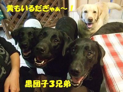 nagoya10059