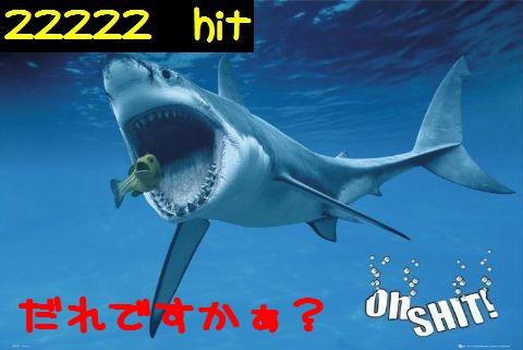 Oh-Shark-l.jpg