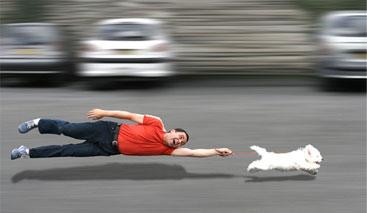 fast_dog.jpg