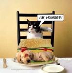 im_hungry-1948.jpg