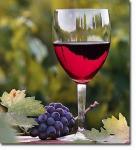 temecula-wine-tours.jpg
