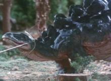 ティクラのブログ-ステゴサウルスの子供