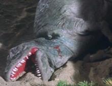 ティクラのブログ-ティラノサウルス死亡