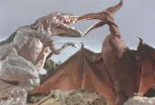 ティクラのブログ-ゴルゴサウルス対テラノドン