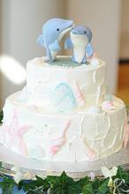 イルカのケーキ♪