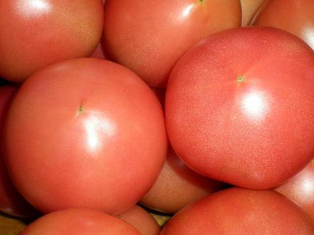 トマト110