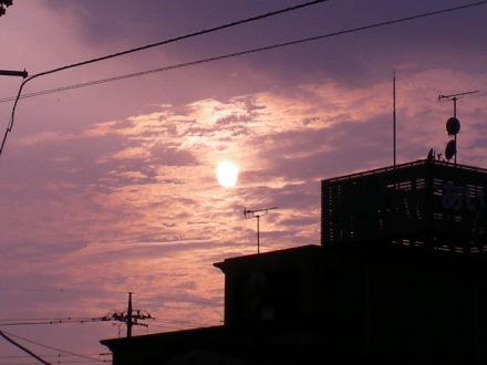 夕陽1022
