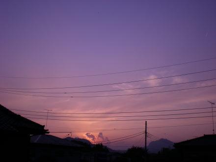 夕陽1108