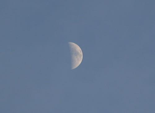 お月さま330