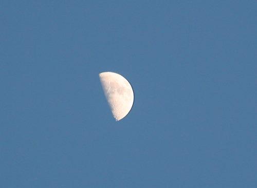 上弦の月31