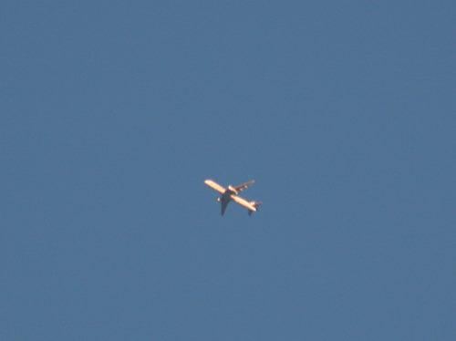 飛行機331