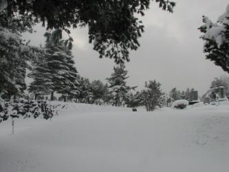 12月30日の景色