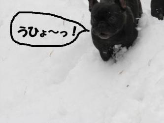 1月19日乙女2