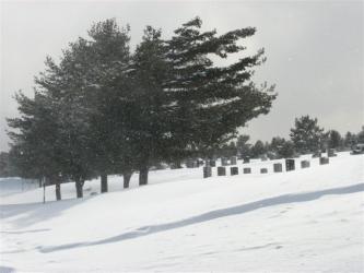 3月2日吹雪