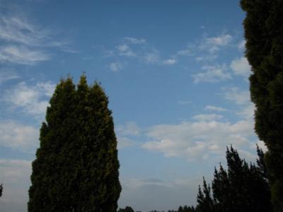 20090604本日の空