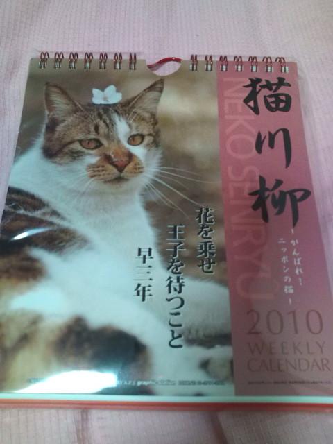 猫川柳のカレンダー買っちゃった♪