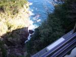本根崎の断崖