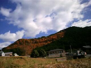20081211150624.jpg