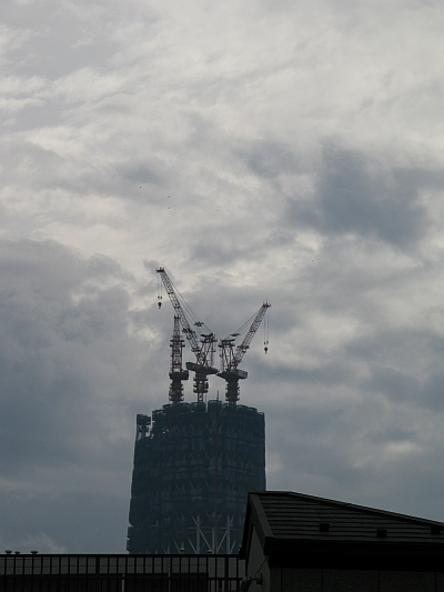 20091128.jpg