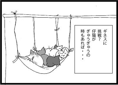 022_1.jpg